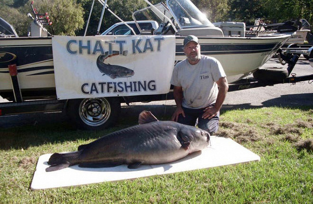 Рыболов поймал рекордного сома налеща