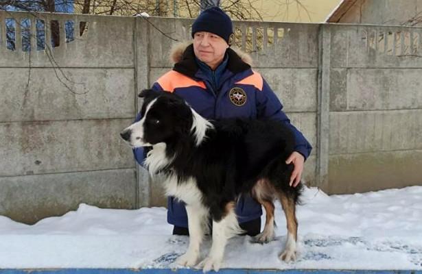 ВРоссии выбрали лучшую служебную собаку-спасателя