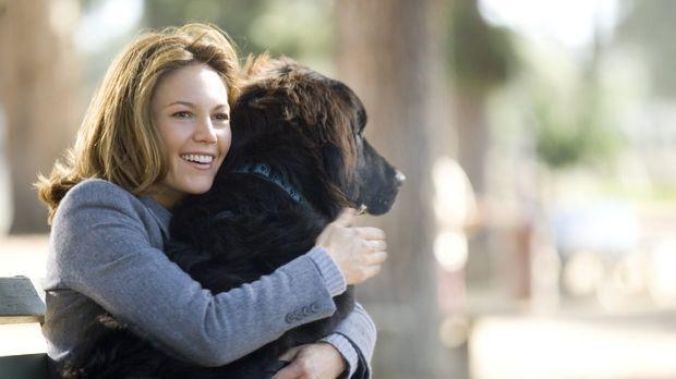 Frau mit hund sucht mann mit herz moviepilot