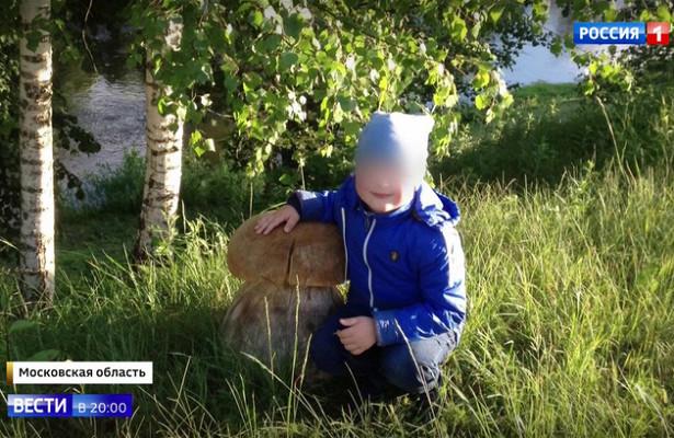 Убийство понеосторожности: вПодмосковье возбудили дело после гибели 5-летнего мальчика