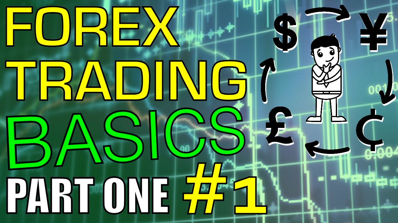 forex trading for noobs