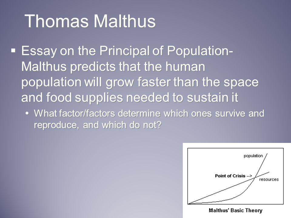 Overpopulation essay