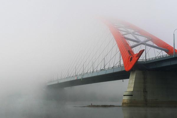 Аналитики предостерегли Россию от«черных лебедей» дляэкономики