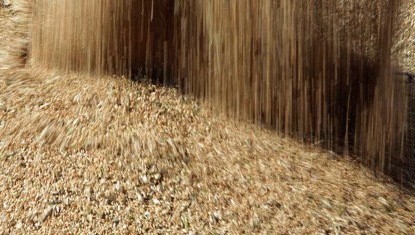 «Калашников» займется грузоперевозками зерна