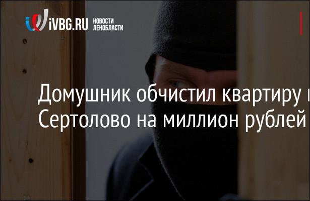 Домушник обчистил квартиру вСертолово намиллион рублей