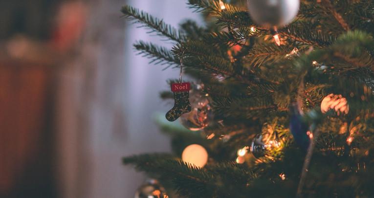 7причин невыбрасывать елку после праздника
