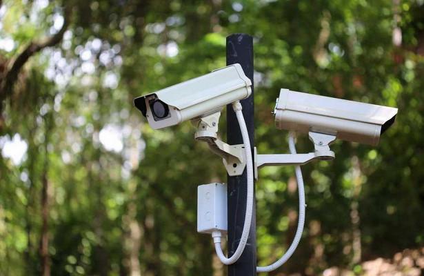 ВВоронеже всеверном лесу появятся камеры