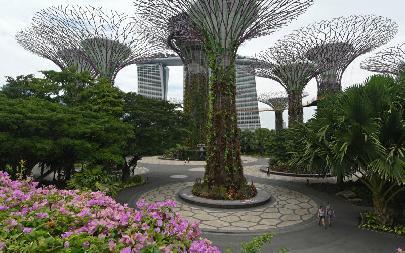 Сингапур почти готов попрощаться скоронавирусом