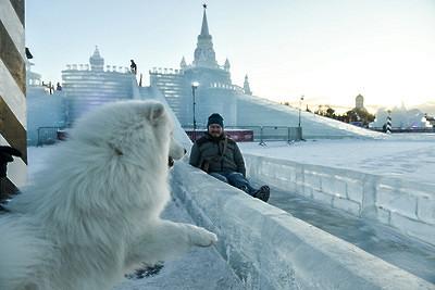 Тестовое открытие ледовых горок пройдет вмосковском парке Победы 5января