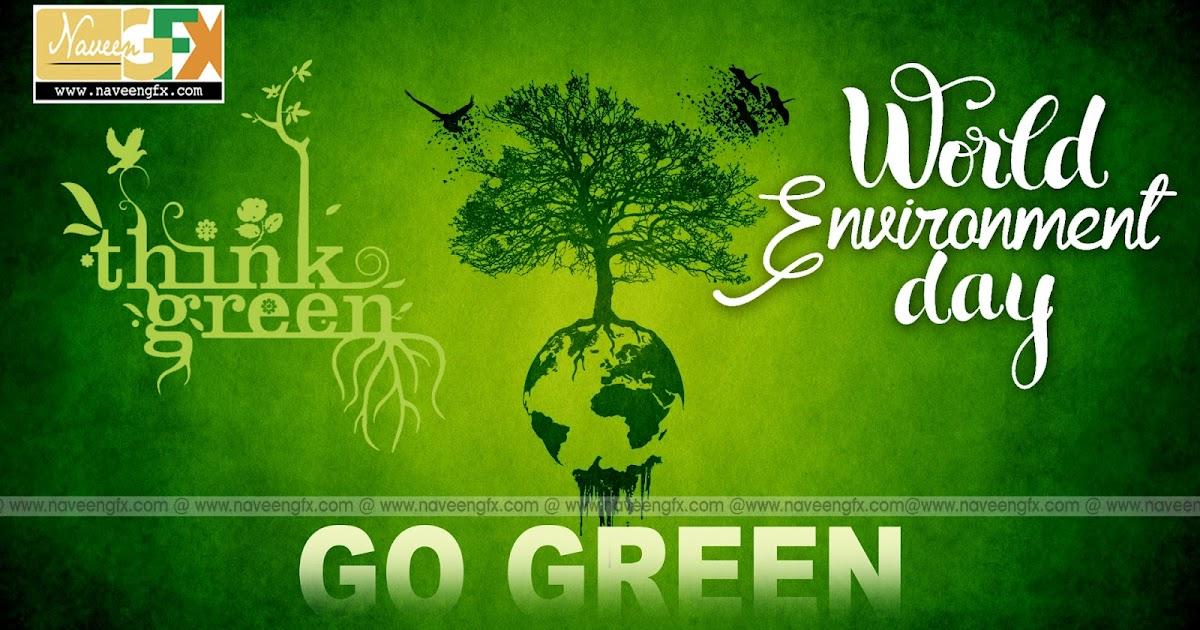 Environment Essays - Free Essays on Environment