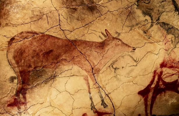 «Сикстинская капелла» найдена вджунглях Амазонки