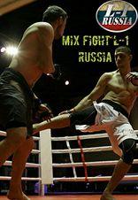 Турнир по MIX FIGHT по версии L-1